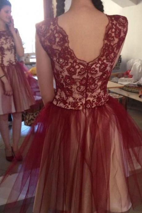 Charming Lace A-Line Dresses,Short Prom Dresses,Cheap Homecoming Dresses, Graduation Dress, Formal Women Dress,Homecoming Dress,C704